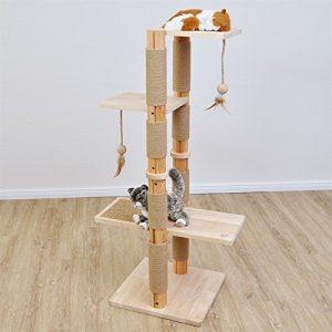 Moyen arbre à chat